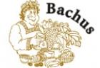 Sponsor - Bachus